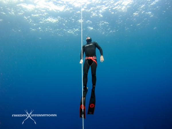 freediving-package-combo-week