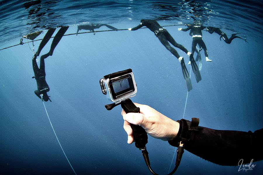 SSI freediving ITC